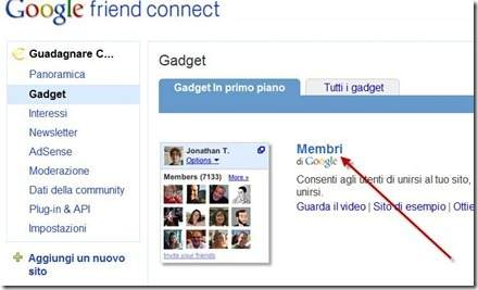 gadget membri google friend connect