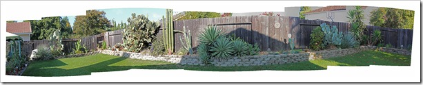 111107_candys_backyard_pano