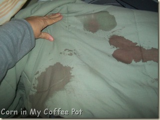 spot remover-comforter 005