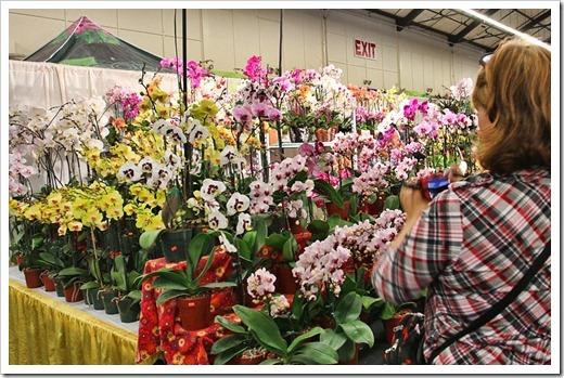 120321_SF_Flower Garden_Show_199