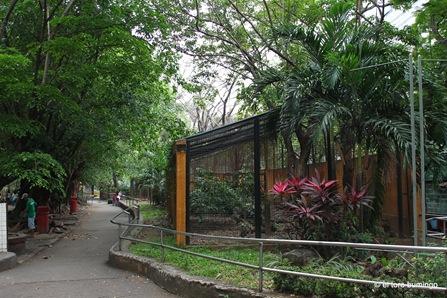manila zoo 23