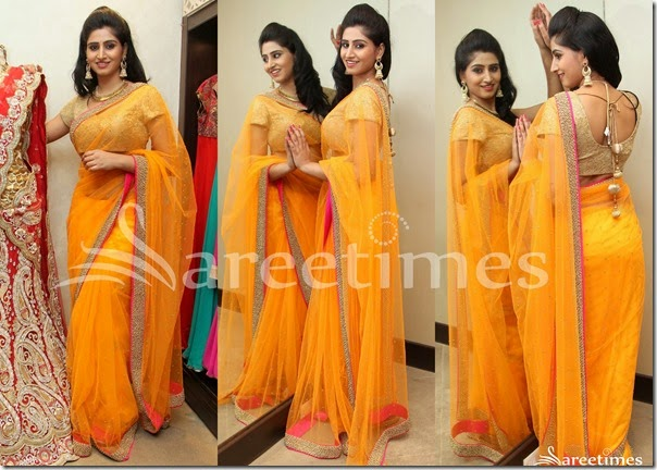 Yellow_Embroidery_Net_Saree