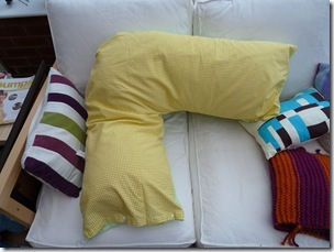 Cushion Tutorial (3)