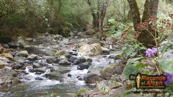 Sierra Norte Oaxaca México