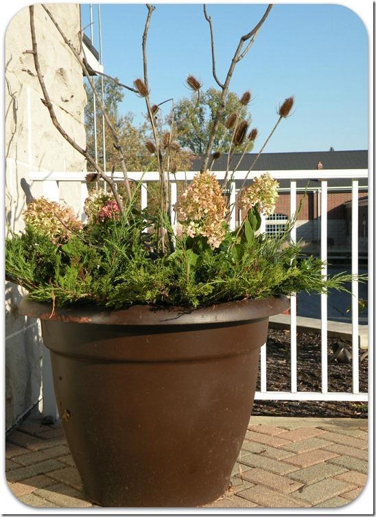 garden planters 1