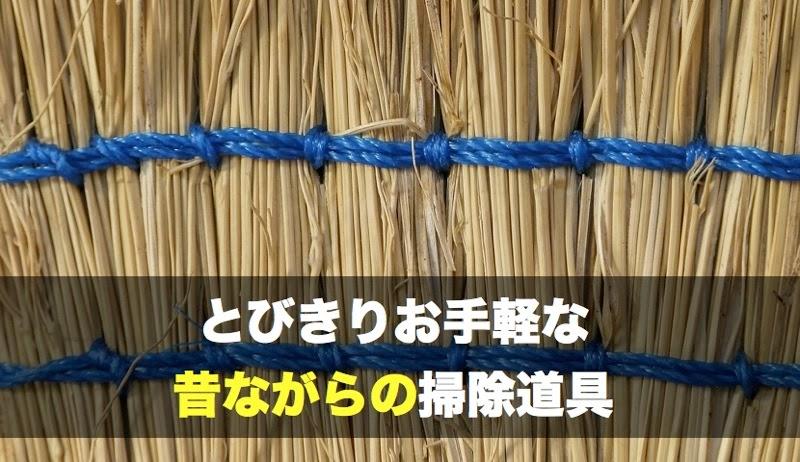 Broom 035 001