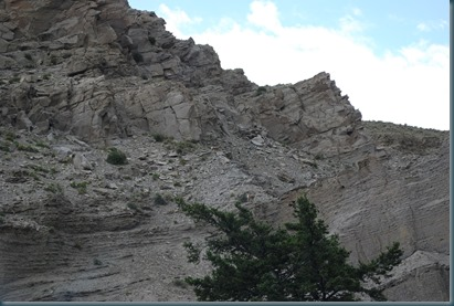 Yellowstone 019