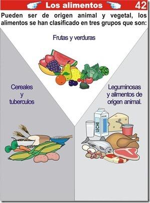 Explicación de los alimentos para niños de primaria