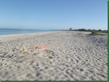 Friday Nokomis Beach (49)