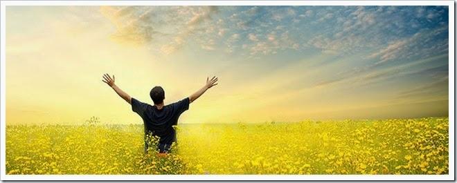 gratidão e felicidade