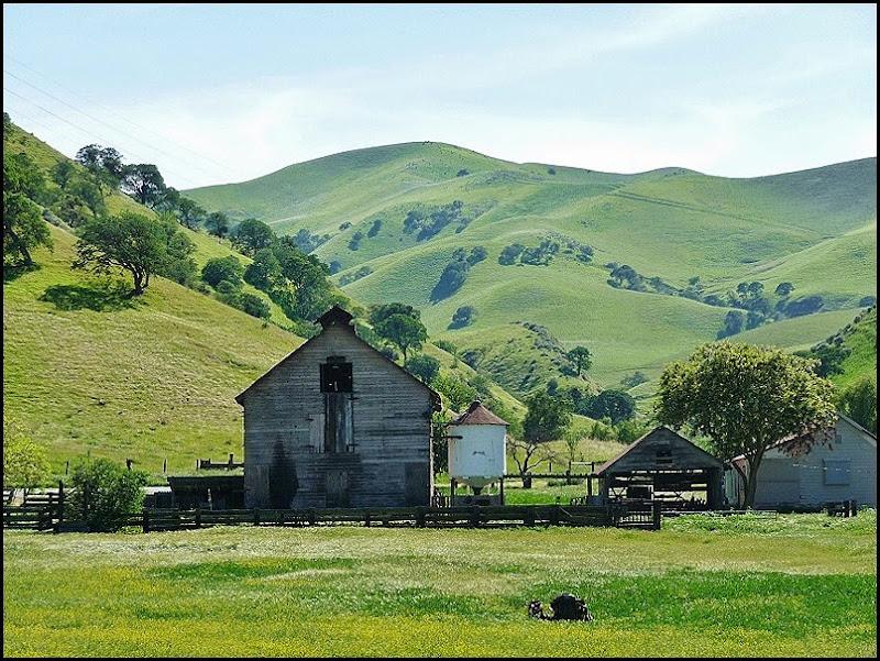 Antioch Green Hills Springtime 007 (800x600)