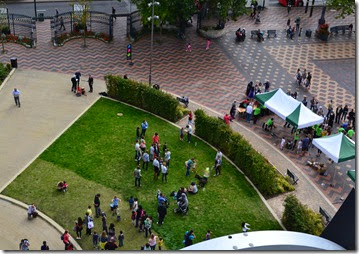 10 science fest from library garden