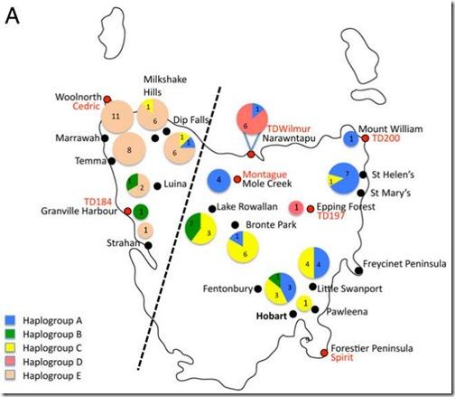 tasmanian-regions-halotype