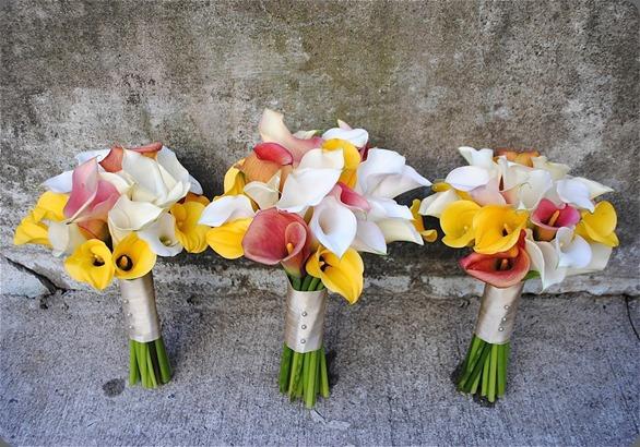 callas DSC_0101 vrebecca shepherd floral design