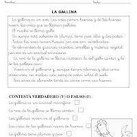 LA GALLINA-1