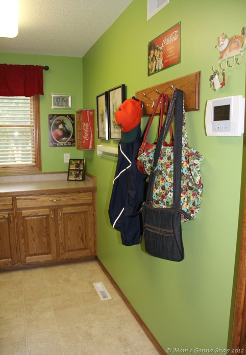 2012-06-28 Laundry Room (16)