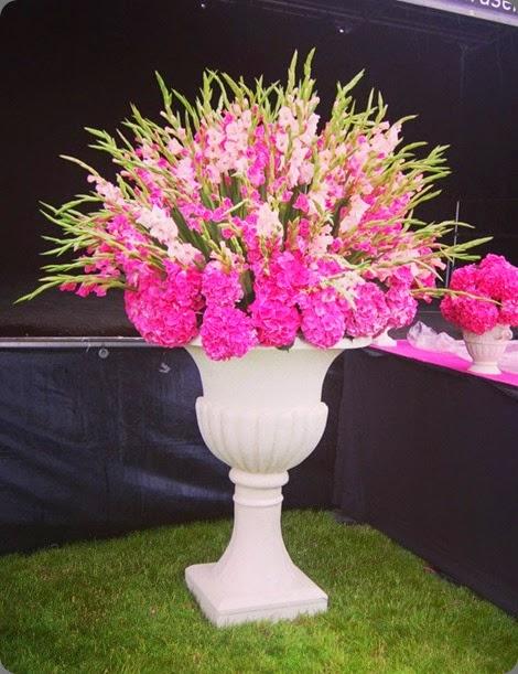 glads 524832_10152771434075510_1300462576_n planet flowers