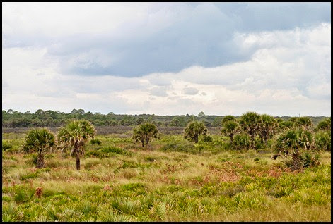 05f - Washington Oaks - The Rocks - View inland toward Hwy A1A
