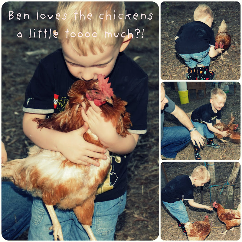 Picnik collage ben chickens