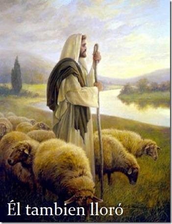 Jesus2012-11