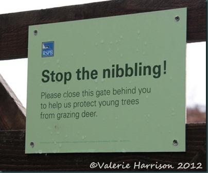 5-nibbling-sign
