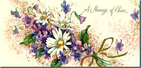 A Message of Cheer, Violets and Daisies