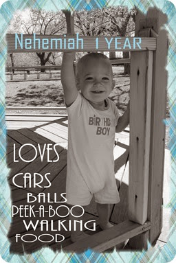 Nehemiah Loves 1 Year jpg