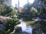 The San Mateo Japanese Garden