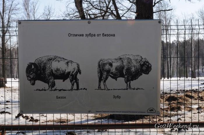 Kiev_Zoo_43.jpg
