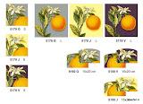 Gobeliny nowoczesne w pomarańcze