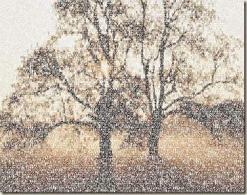 typographic_photo-tree