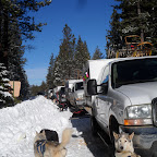 2013 Sled Dog Races