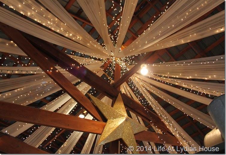 Zapp Hall ceiling