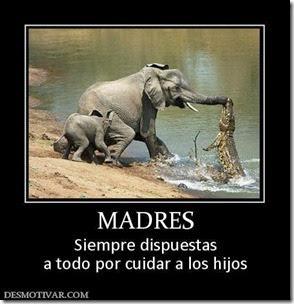 dia de las madres (1)