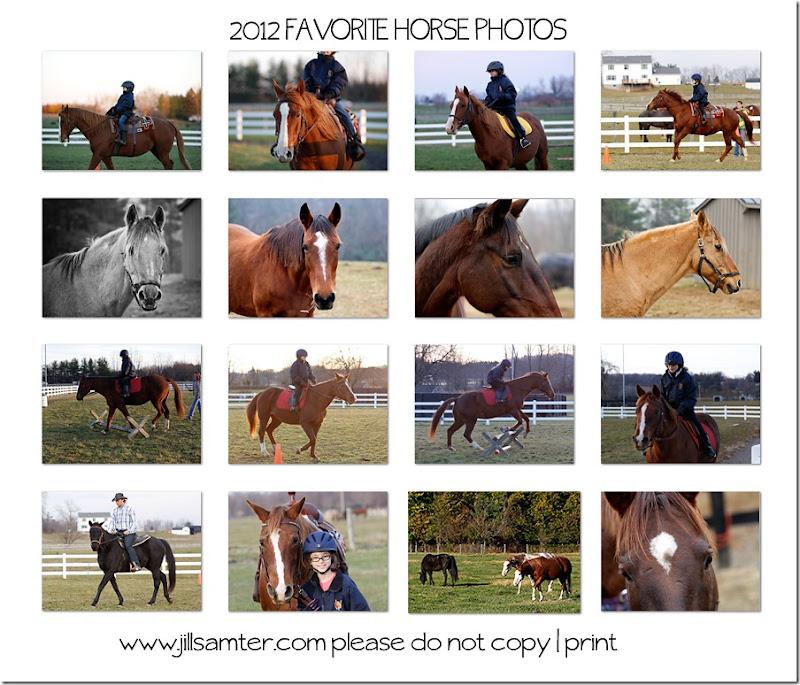 2012horses2web