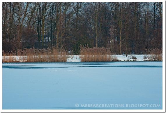 Winter-25