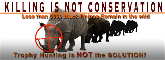 A Tweet storm image reads, 'Killing is not conservation. Less than 5000 Black Rhinos remain in the wild. Trophy hunting is NOT the solution.' Photo: Black Rhino Rescue Project