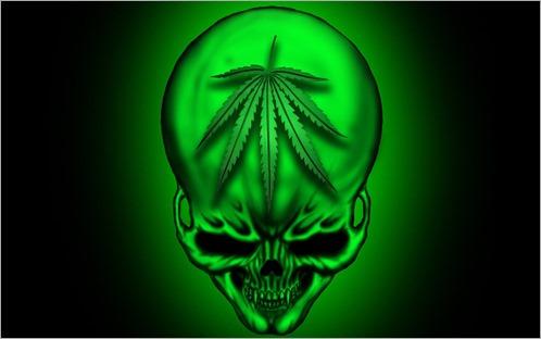 www.fondosni.com-images-2013-01-24-calavera y marihuana-167638 - copia