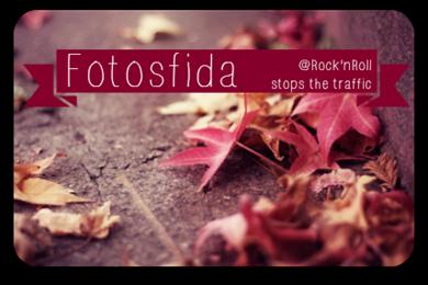fotosfida banner