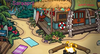 Club-Penguin- 2013-08-0457 - Copy