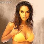 Mallika-Sherawat-Hot-9.jpg