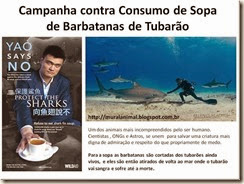 Campanha contra Consumo de Sopa de Barbatanas de_thumb[1]