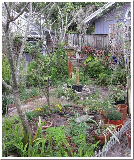 02-26-main-garden