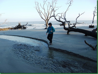 Ocean front walk 157