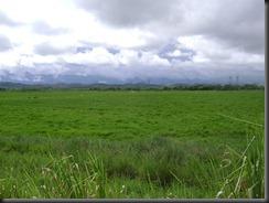Expedição 13-03-2011 034