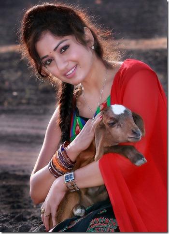 madhavi_latha_cute_photo