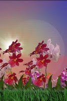 Screenshot of Orchids Live Wallpaper