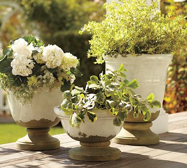 Whitewashed urns are perfect for a bright summer garden. (potterybarn.com)