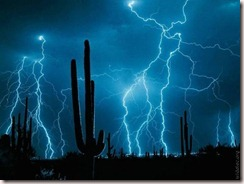 Cactus and Lightning