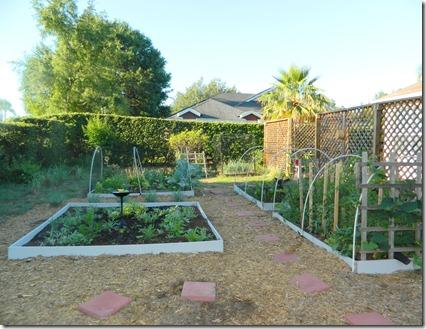 lighter garden